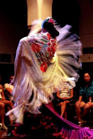 La Casa del Flamenco Auditorio Alcantara: Susana Casas en La Casa del Flamenco