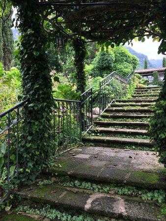 Hotel Atitlan: территория