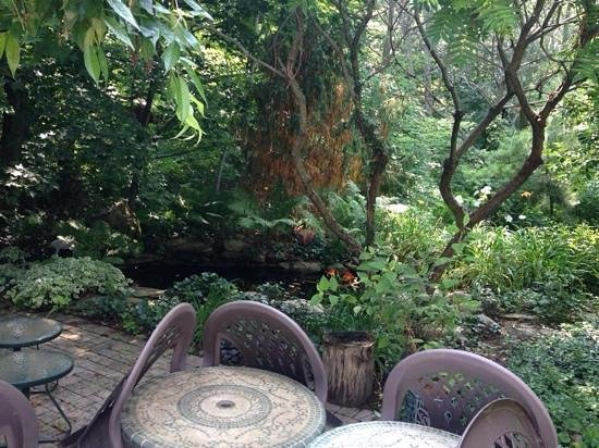 Applewood Hollow Bed and Breakfast : Secret garden!