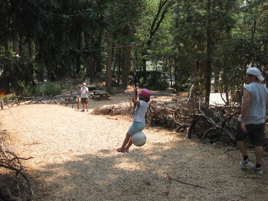 Evergreen Lodge at Yosemite: The famous zip line!
