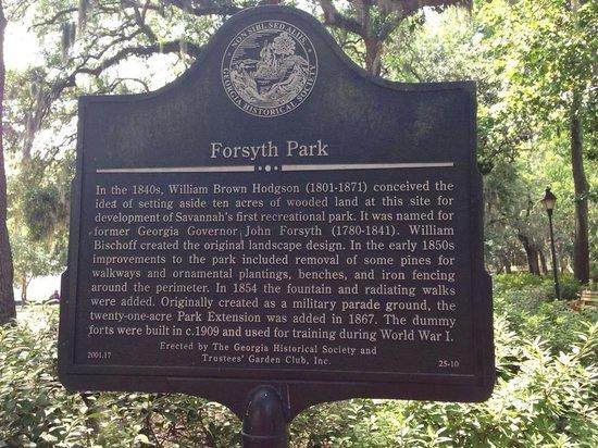 Forsyth Park: Beautiful park