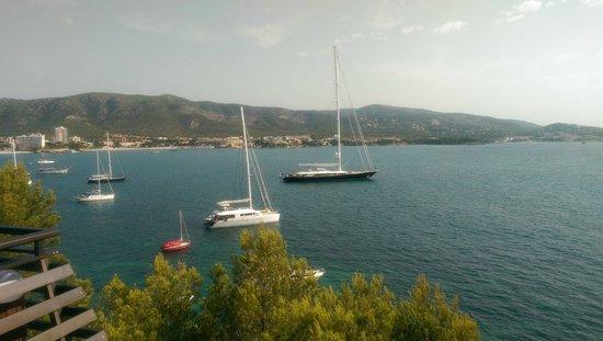 Alua Palmanova Bay: View from terrace