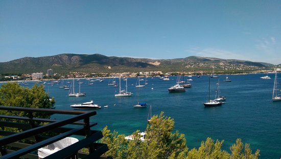 Alua Palmanova Bay: View from terrace