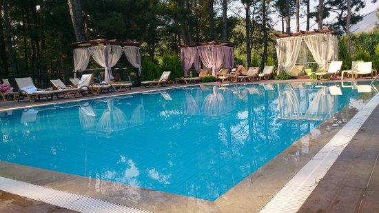 Green Forest Hotel: Quiet pool