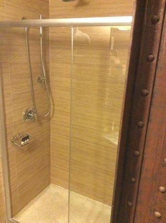 Empire Hotel: shower with no door