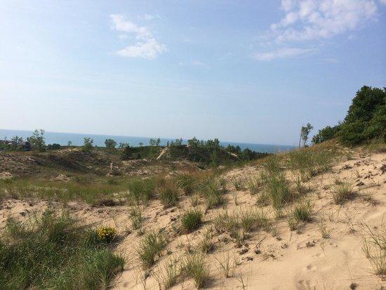 Indiana Dunes National Lakeshore: Hiking on the dunes!