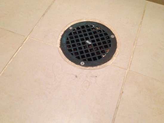 Hammock Beach Resort: Terrible experience. Hair on bathroom floor and in shower drain.