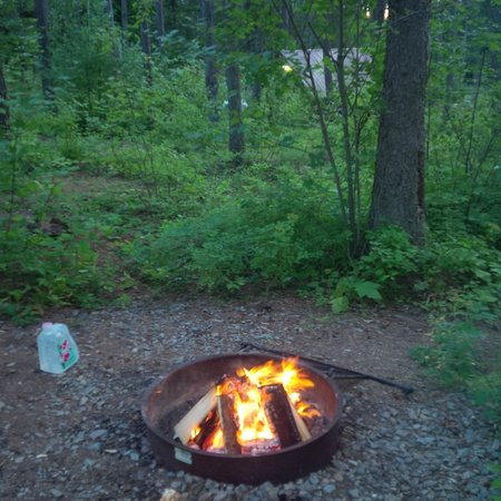 Timber Wolf Resort : fire pit outside cabin