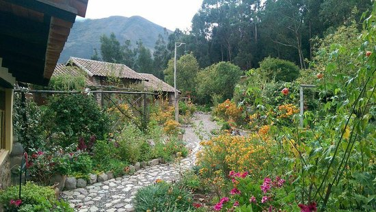 Casa Colibri eco-Lodge: The beautiful grounds