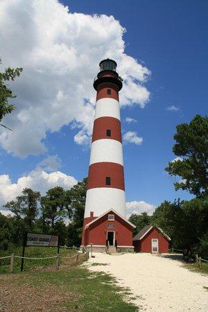Channel Bass Inn: Lighthouse on Assoteague