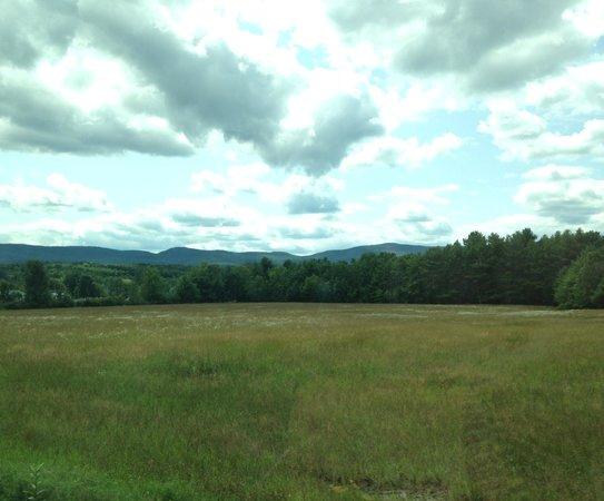 Baumann's Brookside: Catskill mountain view
