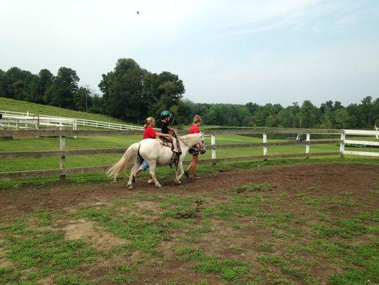 Baumann's Brookside: pony rides at Racine/K&K farm