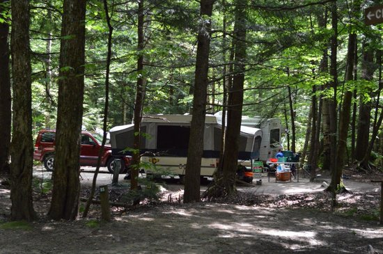 Lost River Valley Campground : The ducks site