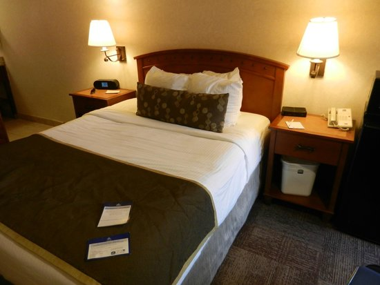 Best Western Pioneer: 1 quuen bed room