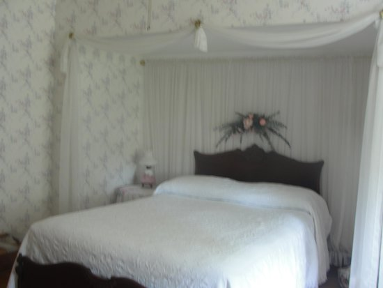 Bridgewalk Bed & Breakfast : The Evergreen Room