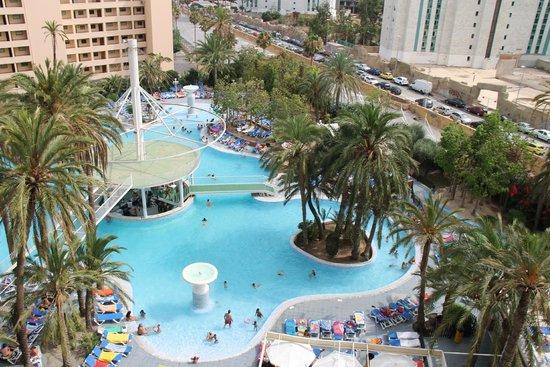 Magic Tropical Splash : Pedazo piscina.