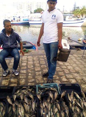 Qsiba: Рыбаки