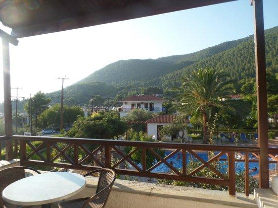 Delphi Hotel : From balcony