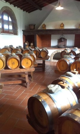 Alessandro Cammilli Private Tours: Aging Balsalmic