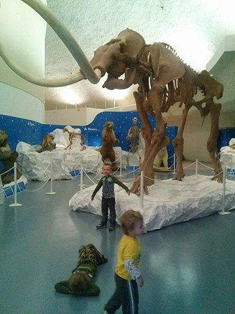 Sternberg Museum of Natural History: museum