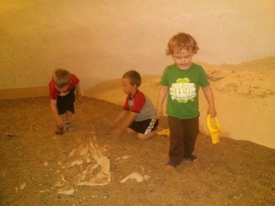 Sternberg Museum of Natural History: museum dig pit