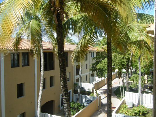 Park Royal Puerto Rico at Club Cala: From our room.