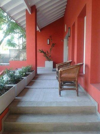 Hotel Jacaranda: Recepción