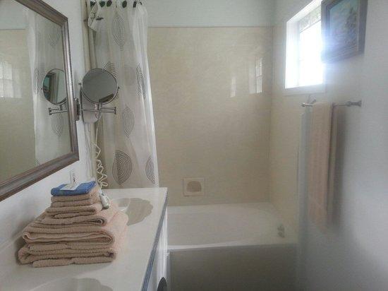 Austin Motel: Bathroom