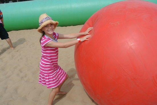 aMaizin! Adventure Park : Ball fight.