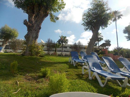 Club Marmara Agadir : Jardin