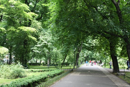Planty Park : Part of the scenic walk