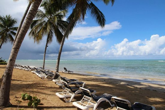 Hotel Alisei: Su zona de playa