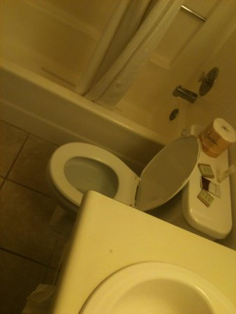 Super 8 Ogden: A plastic bathroom...