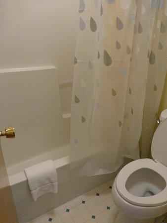 Glenwood Springs Inn: Small bathroom