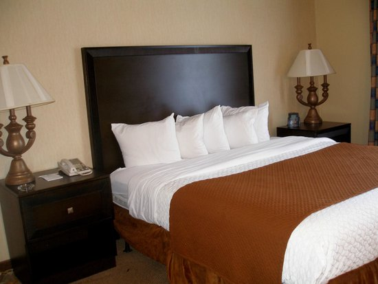 Embassy Suites by Hilton Hotel Kansas City - Plaza : King size bed, very comfy.