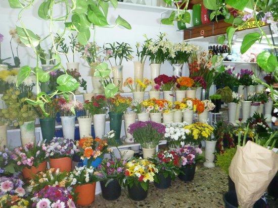 Gordon Inn: Flower shop next door