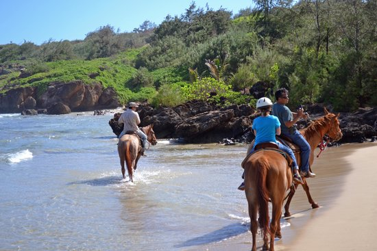 CJM Country Stables: Riding along the beach