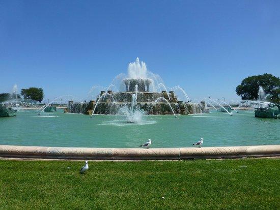 Buckingham Fountain: fountain