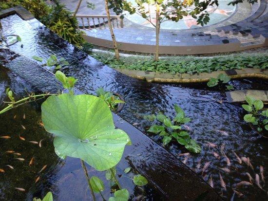 Ayung Resort Ubud: Water feature near reception