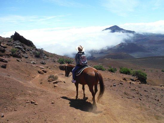 Haleakala Crater: Dawn enjoying the view