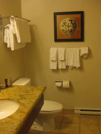 Quebec City Marriott Downtown: bathroom