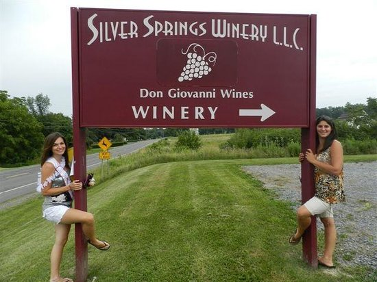 Burdett, NY: Handcrafted Gold Medal winning wines
