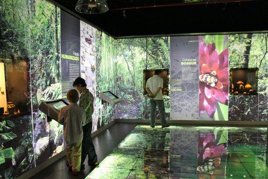 Jade Museum: Interactive technology