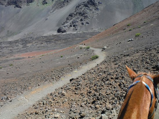 Haleakala Crater: Trail down to the floor
