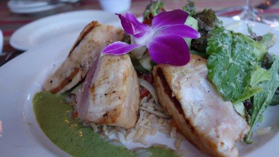 Harrison's Restaurant & Bar: Grilled Opah