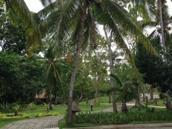 Alegre Beach Resort: 庭