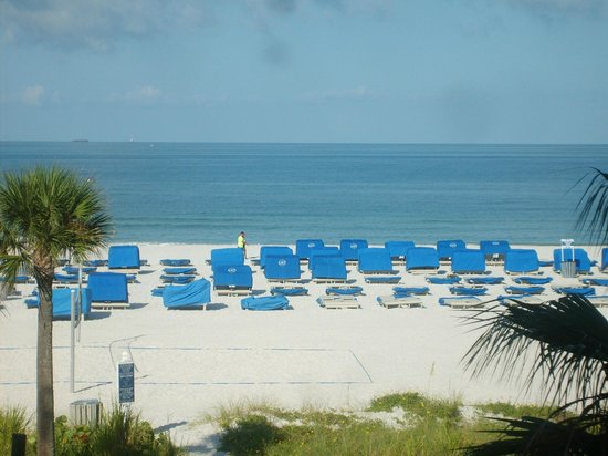 TradeWinds Island Grand Resort: From our Balcony....morning coffee watching dolphins