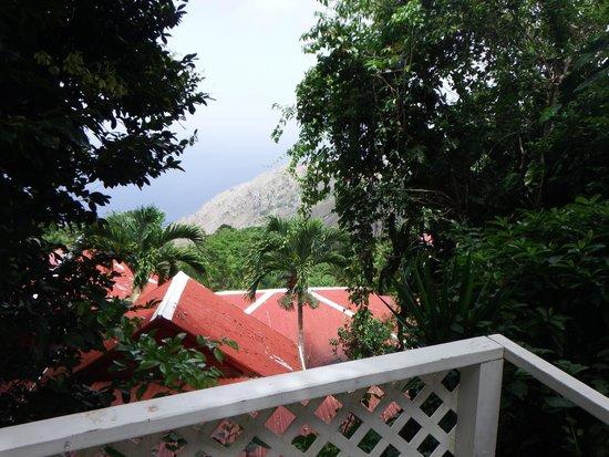 El Momo Cottages: Vue du cottage