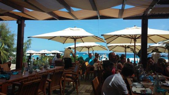 Le Palm Beach Palombaggia: vue