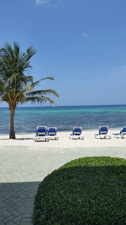 Castaways Cayman Beach Resort : View from the room window.